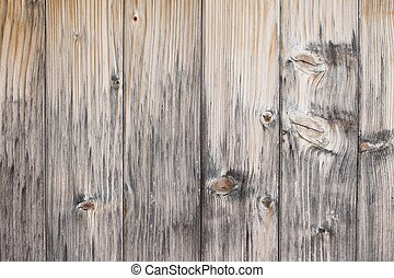 Wood - Light wooden background detailed texture