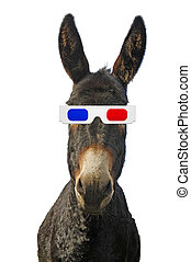Donkey with 3d glasses isolated on white background