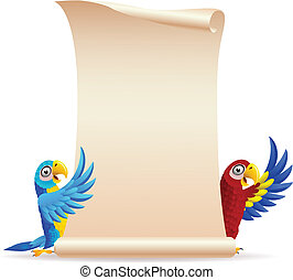 Macaw bird with scroll paper