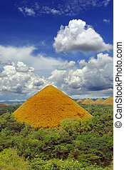 One Bohol Chocolate Hill, a natural landmark and a very...
