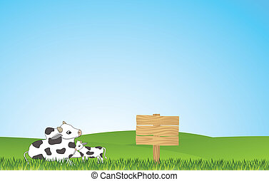 funny cow  in the yard with blank s