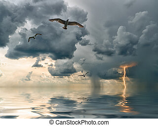 Seagulls over ocean, comes nearer a thunder-storm with rain...