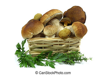 Mushrooms in a wooden basket  on white background.