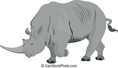 Rhinoceros or Rhinocerotidae, illustration - Rhinoceros or...