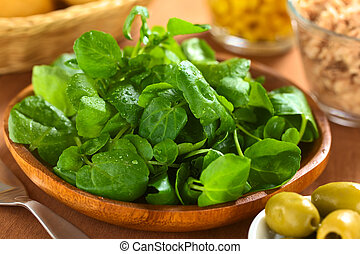 Fresh Watercress - Fresh watercress on wooden plate with...