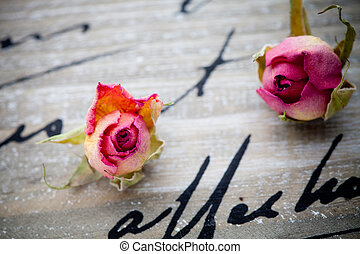 Dried roses - Beautiful dried pink roses on wooden...