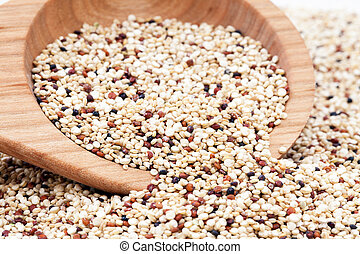 MIxed Quinoa - Mixed Quinoa seeds spilling from a wooden...