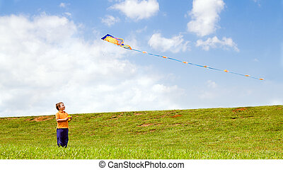 Child flying kite outdoors at park
