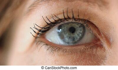 Blue eye. Closeup.
