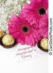 Mothers Day - Gerbera daisies and mothers day card on white...