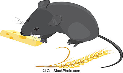 Mouse with wheat ear and cheese - Field mouse with wheat ear...