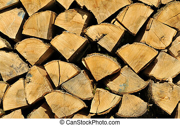 Cross section of wood - Background of cross section of wood