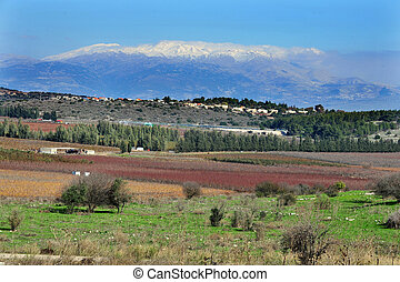 Travel Photos of Israel - Mount Hermon - Galilee landscape...