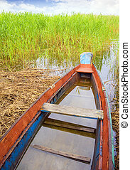 boat in a high cane - Green boat in a high cane on the bank...