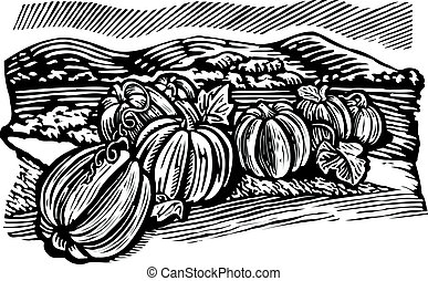 Pumpkin patch, black and white