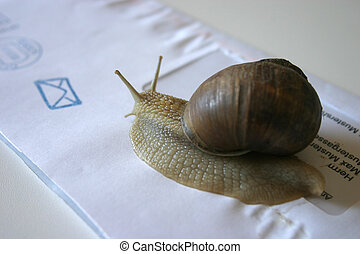 email vs snail mail argumentative essay email and regular