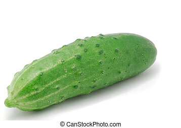Cucumber - A fresh cucumber on the white background