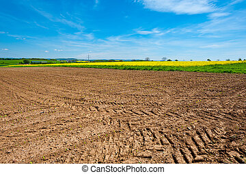 Plowed Field - Village Surrounded by Yellow Fields of...