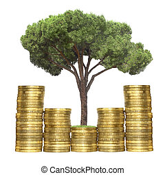 tree growing from coins, isolated