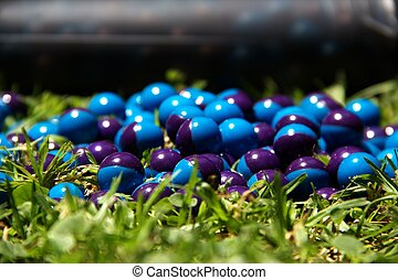 Paintballs and pod on the grass - Blue paintballs and pod on...