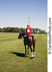 Polo player on horseback contemplating the grounds before...