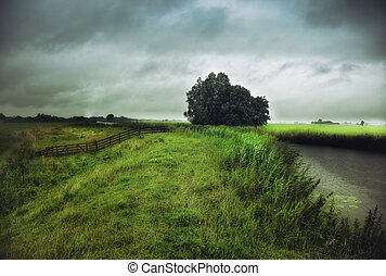 rain weather landscape  photo