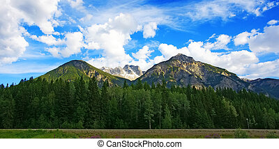 rocky mountains view from high way - Scenic summer rocky...