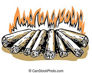 A log fire