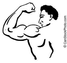 A black and white version of a line drawing of a muscular...
