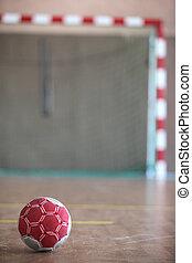Ball in front of indoor goal