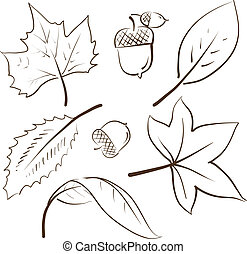 Autumn leaves sketch - Doodle style autumn vector...