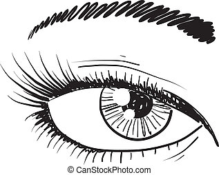 Human eye sketch - Doodle style human eye closeup sketch in...