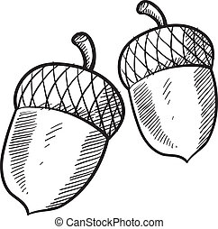 Acorn or buckeye sketch