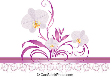 Orchids with ornament. Border - Orchids with floral...
