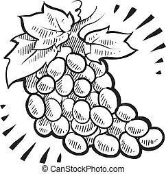 Bunch of grapes sketch - Doodle style fresh, juicy bunch of...