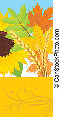 Abstract autumn banner with leaves, sunflower and wheat...