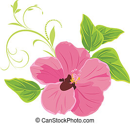 Pink flower isolated on the white. Vector illustration