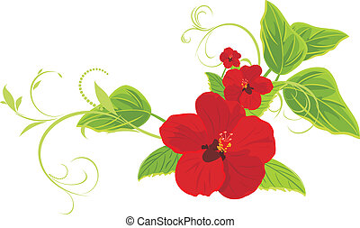 Red flowers with sprigs. Vector illustration