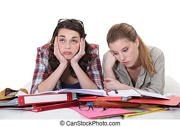 Two female friends revising together