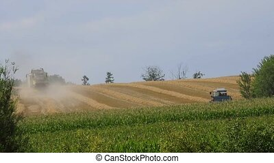 harvester-thresher during harvest