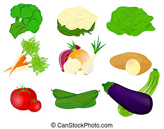 Vegetables - Vector illustration of Vegetables