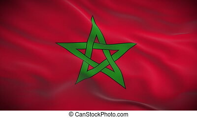Highly detailed Moroccan flag ripples in the wind Looped 3d...