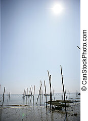 Wooden poles in the sea