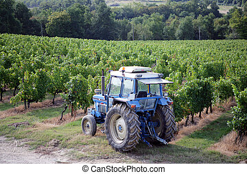 Tractor in a vine field