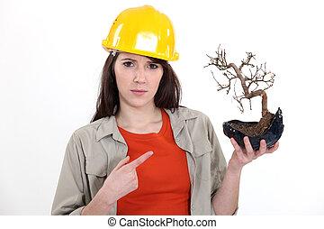 Tradeswoman holding a bonsai tree