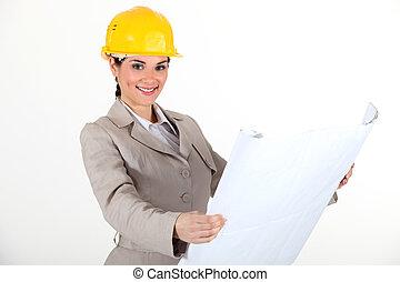 ingeniero, Examinar, técnico, dibujo