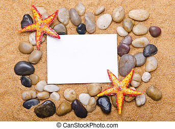 Sea stars isolated on the white