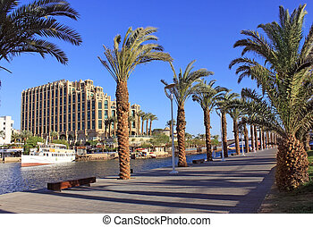 Eilat - a resort on the Red Sea, Israel - View on Palm...