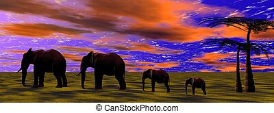 elephants and sky orange
