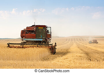 grain harvester combine in field - grain harvester combine...